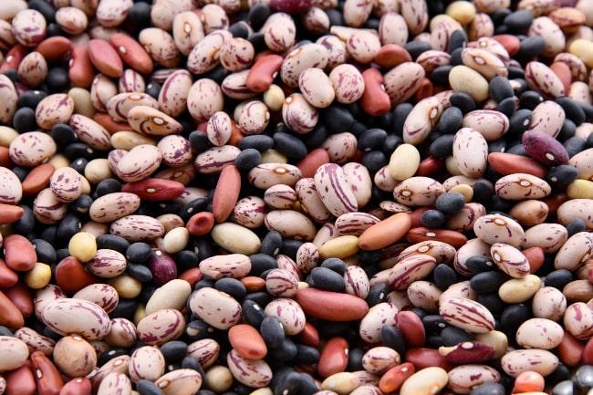 Πρωτείνη και χορτοφάγοι - plantbased.gr