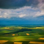 Χορτοφαγία στην προστασία του περιβάλλοντος
